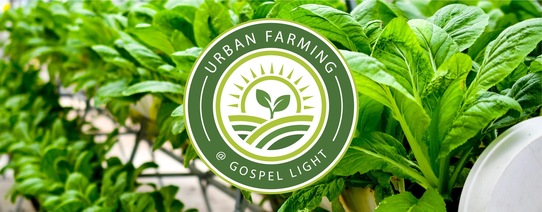 Urban Farming-05